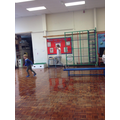 We investigated the movement of animals to see if we could move in the same way!