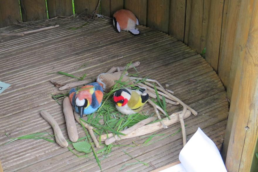 watching them build their nests...