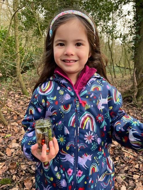 Woodland walk and Winter treasures