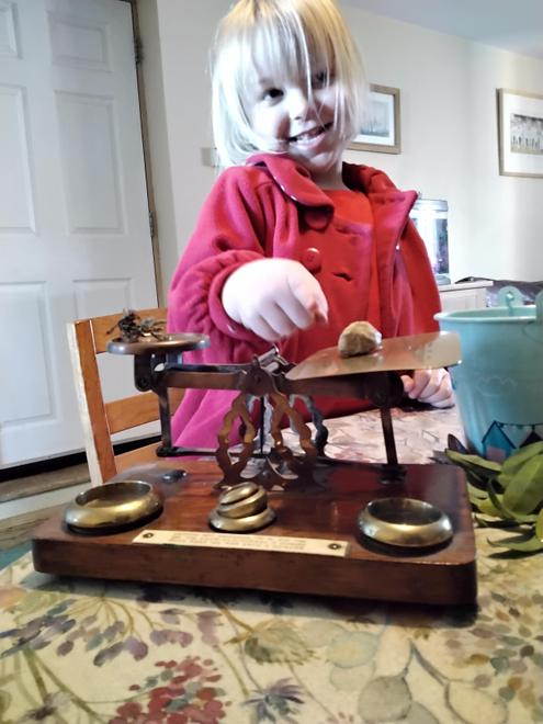 Investigating with balance scales