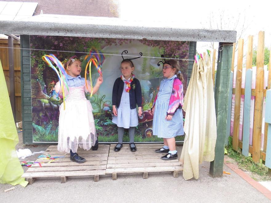 A magic show to make the butterflies vanish!