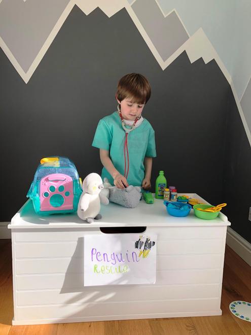 We set up a 'Penguin Rescue' centre...