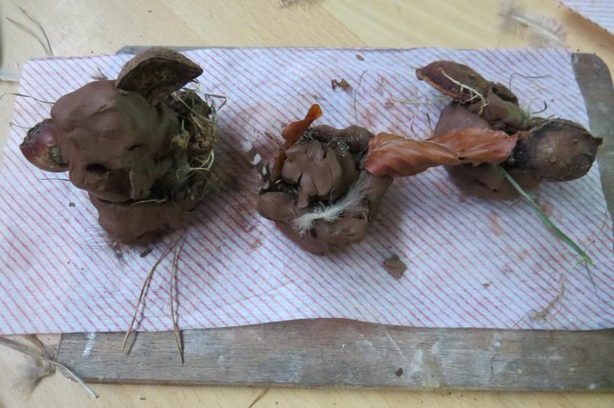 ..and their nests; clay, twigs, leaves & feathers.