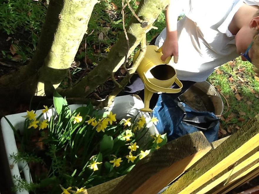 We began to work in our garden, watering