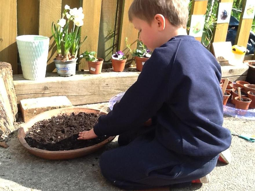 planted and watered seeds.