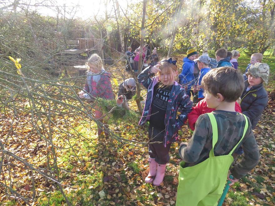 Forest School in the Autumn sunshine