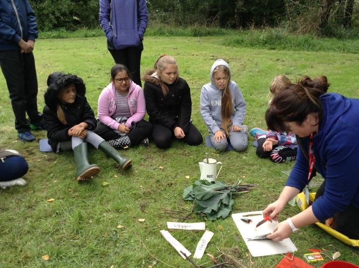 Forest School at Eldon Forest!