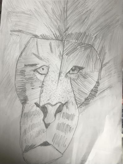 Superb study of a lion's face by Stephen from Baobab