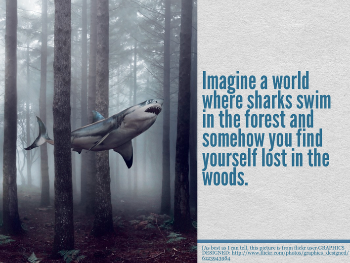 What will happen in the forest?
