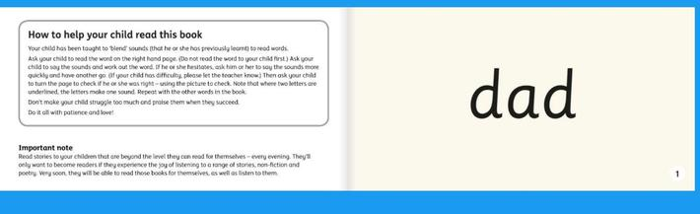 Your child is now practising reading consonant, vowel,consonant (CVC) words