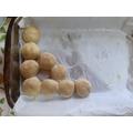 Janiece's doughballs