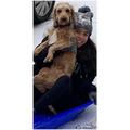 Chloe and Teddy sledging!!