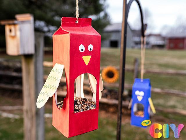 Make a bird feeder out of an old carton and watch the birds!