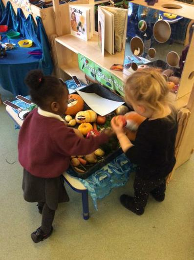 We have been investigating fruits and vegetables