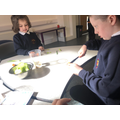 Regrowing vegetables investigation