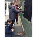 Exploring seeds and bulbs and planting our living wall