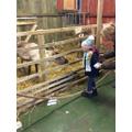 Farm Visit - Rudolf!