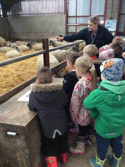 Here we are exploring the lambing sheds.