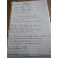 Beach Poem by Emily Davies