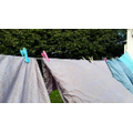 Washing on the line