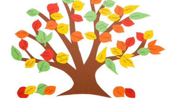 Make a gratitude tree!