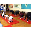 yoga bugs parent workshop