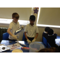 Making Fossils for Science Week