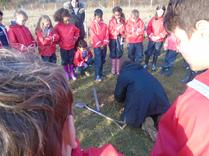 Year 5 Tree Planting in Harmony Woods. 7