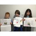 Stonehenge leaflets.