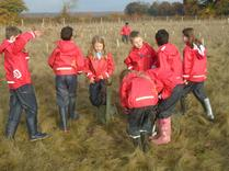 Year 5 Tree Planting in Harmony Woods. 2