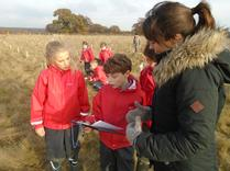 Year 5 Tree Planting in Harmony Woods. 5
