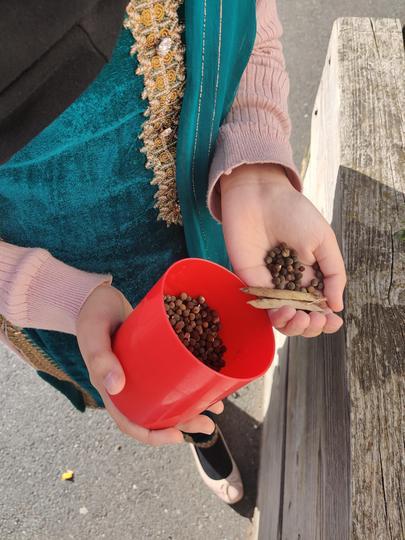 Y6 have been helping Mrs. Harper to harvest the seeds from last year's Sweet Peas.