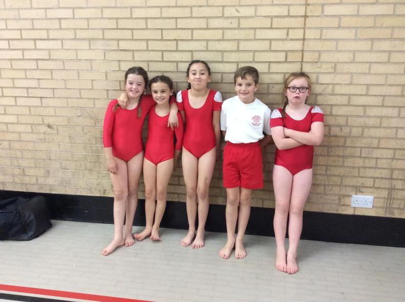 Years 4 and 5 Gymnasts