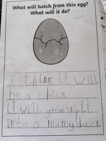 Jana can write fantastic sentences!
