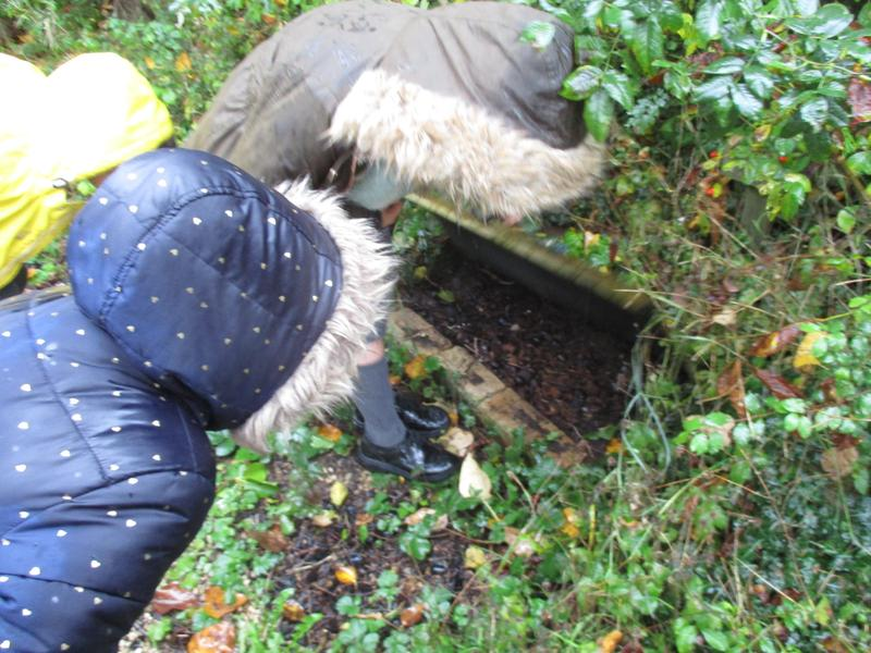 What's Under the Flap during damp conditions?