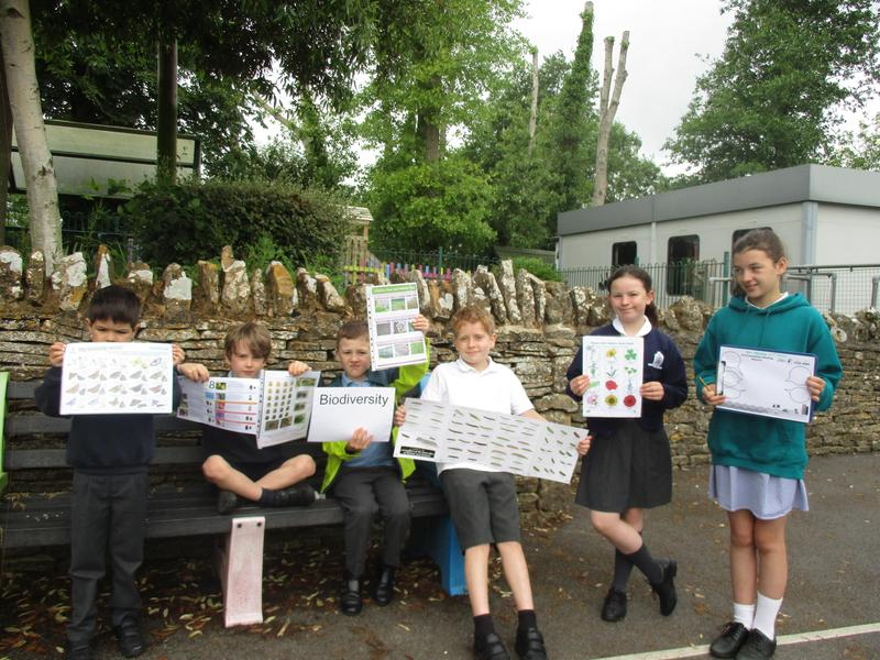 Leading our Biodiversity surveys