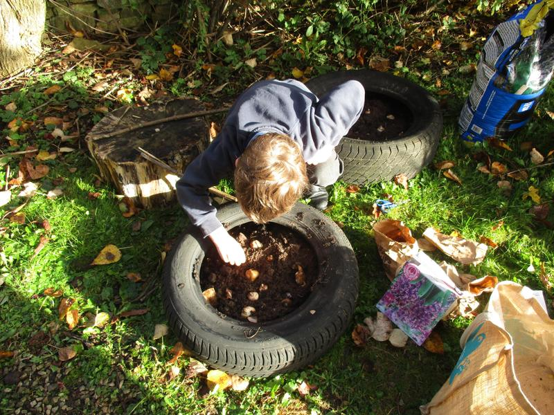 Bulb planting in our tyres