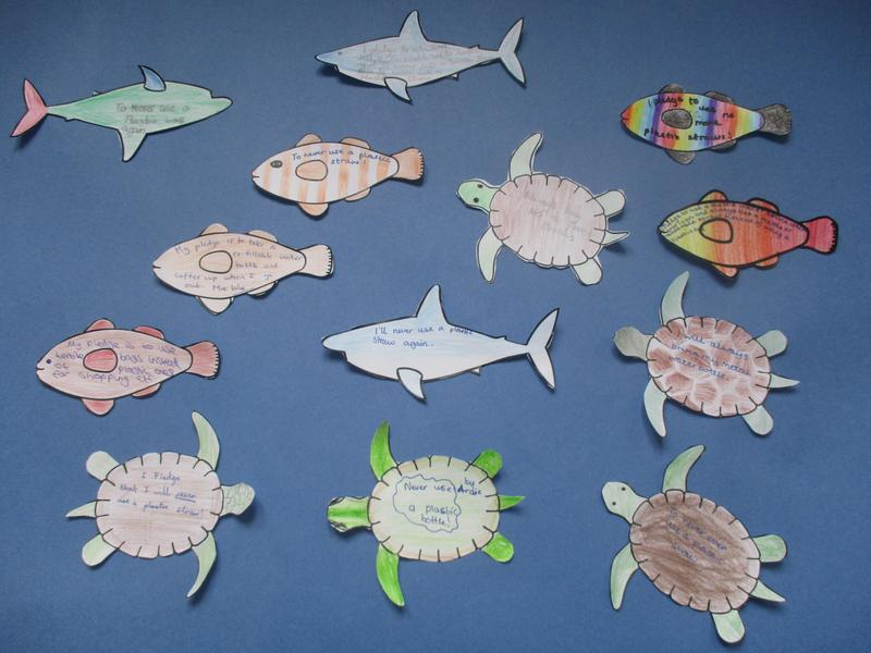 Our Ocean Day Pledges