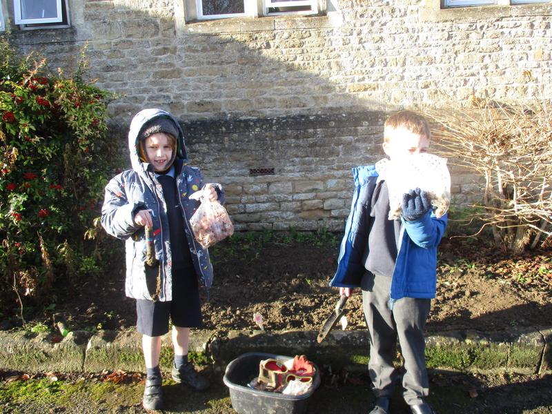 Planting bulbs for early spring