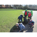 Using our maths eyes -Count in 10s to count the grass!