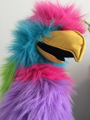 Pepe - The Spanish School Bird