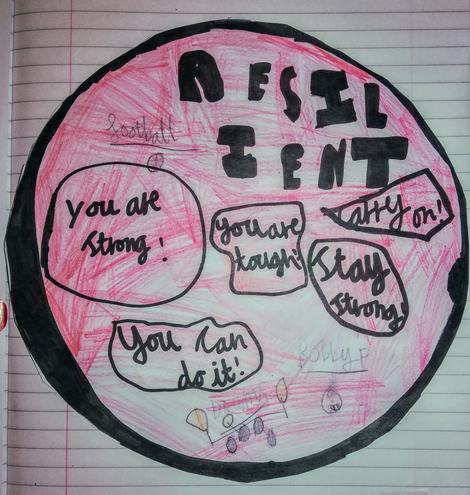 Elliott's Shield - Bobby Firmino wld be proud! x