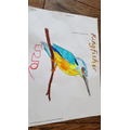 E has made a super kingfisher picture. He spotted a kingfisher at the creek!