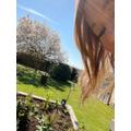 Mrs Kelleher loves gardening and taking care of her flowers!
