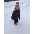 B saw some magpies in the snow