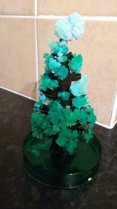 Benjamin Humphreys - Crystal Christmas Tree