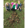 We made dinosaurs with leaves.