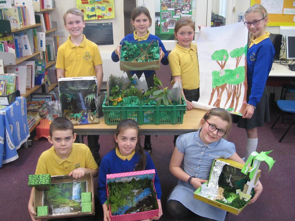 Rainforest Dioramas February 2019