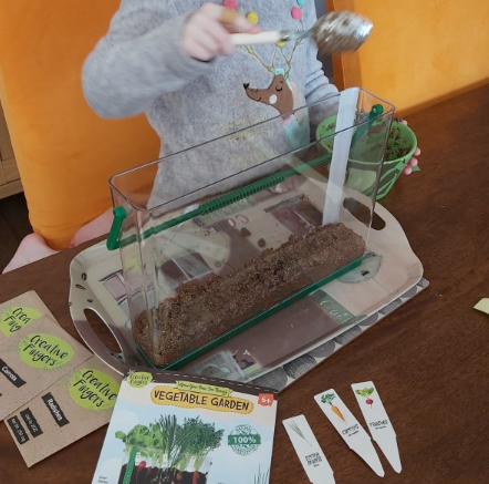 Planting vegetables.
