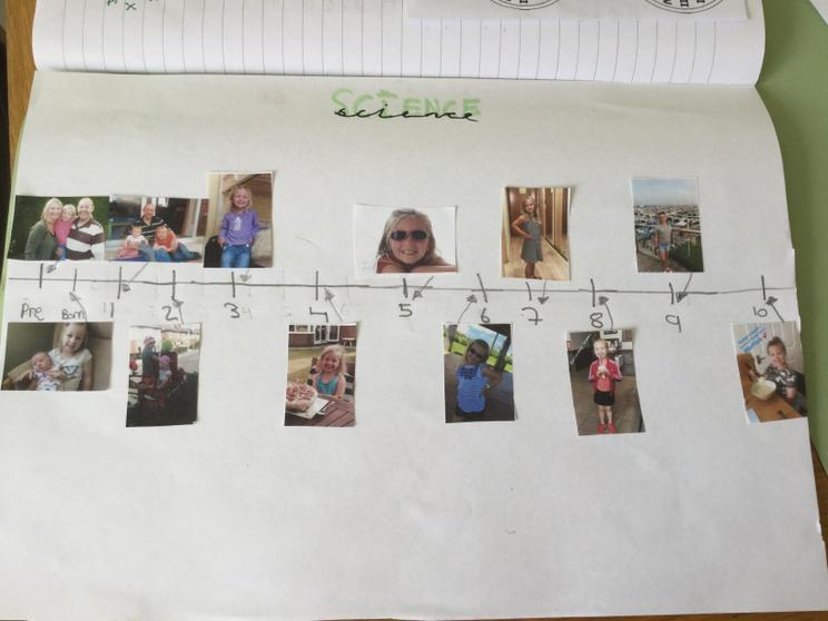 Amie's timeline for her science work.